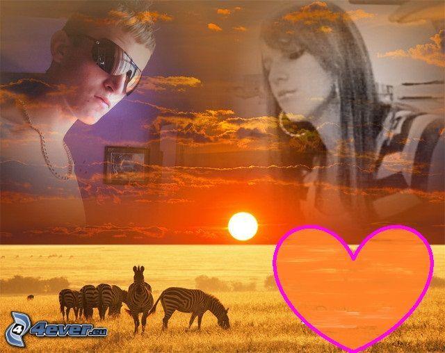 kärt collage, hjärta, solnedgång på savann, zebror