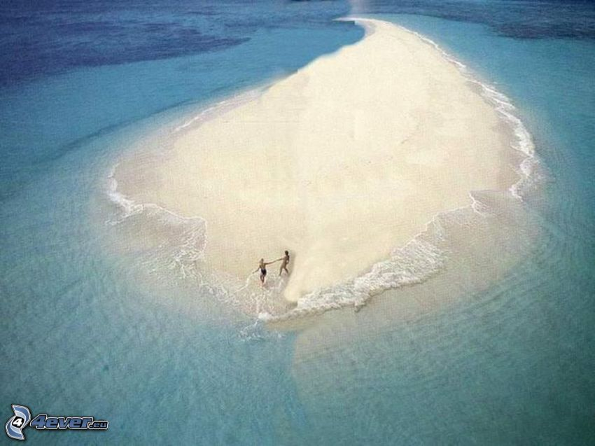par på stranden, ö, sand, hav