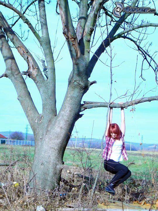 tjej, gunga, frihet, gammalt träd, kalt träd