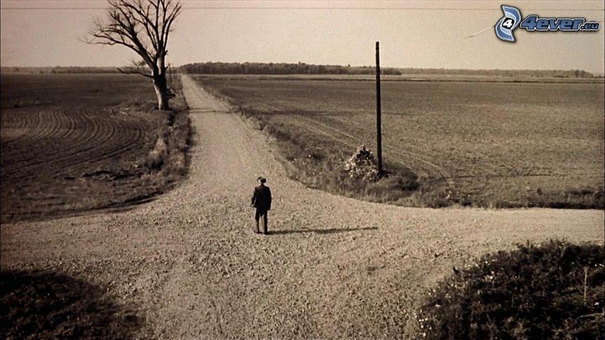 korsning, fält, man, gammalt foto, svartvitt foto