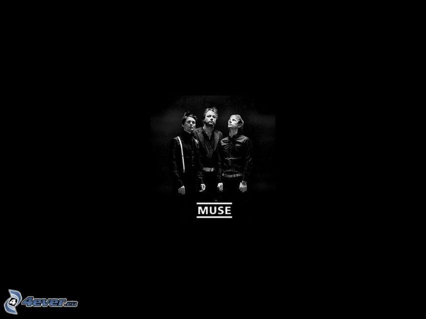 Muse, svart bakgrund