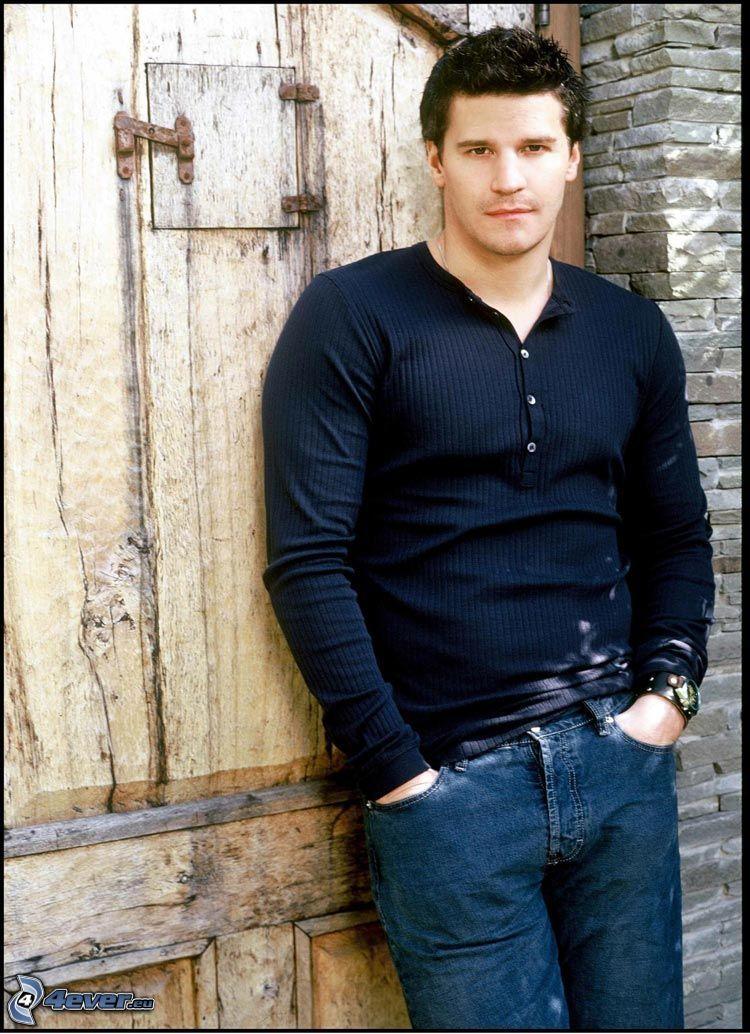 David Boreanaz, Seeley Booth
