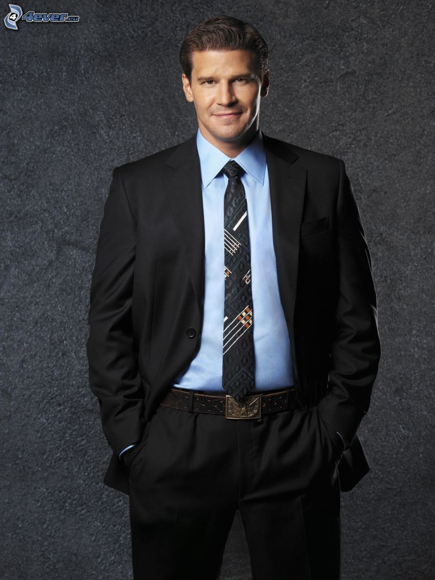 David Boreanaz, Seeley Booth