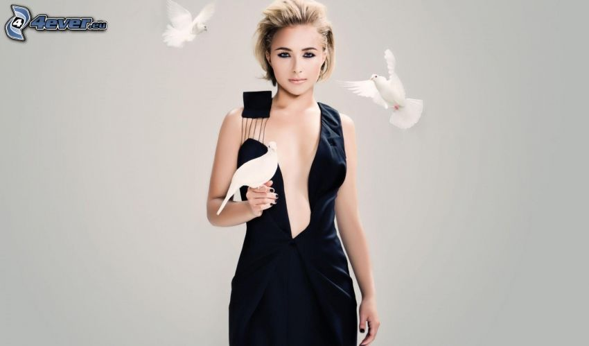 Hayden Panettiere, skådespelerska, duvor, svart klänning