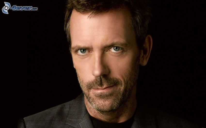 Hugh Laurie, Dr. House