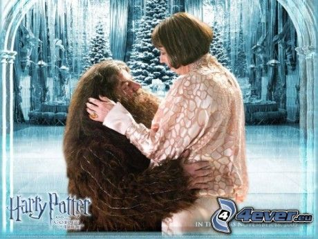 Rubeus Hagrid, Harry Potter