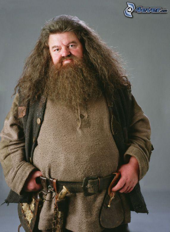 Rubeus Hagrid, Harry Potter