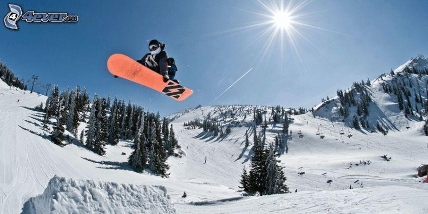 snowboardåkare, snowboardhopp, kullar, träd, snö, sol