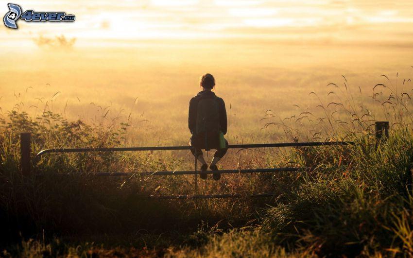 staket, tjej, åker, ensamhet