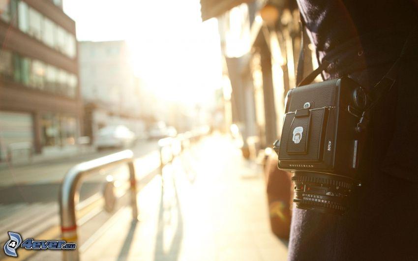 tjej med kamera, gata, solsken