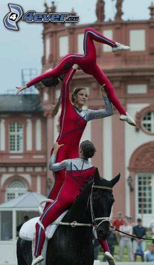 voltige, akrobatik, svart häst