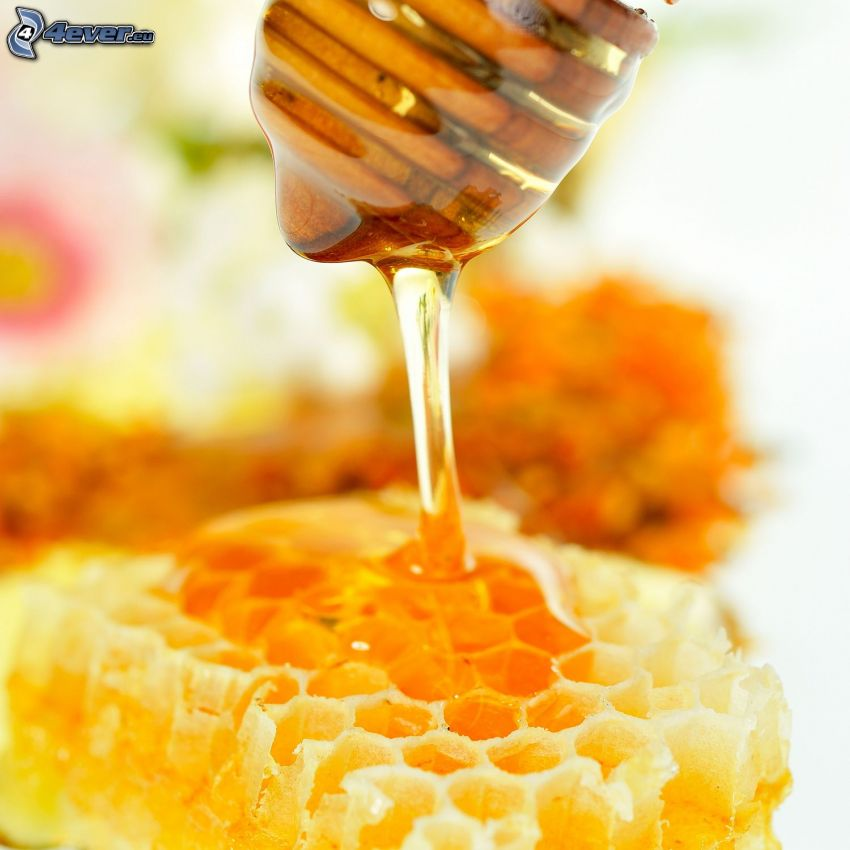 bivax, honungssked i trä, honung