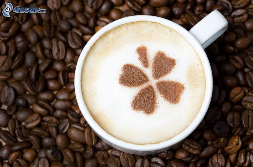cappuccino, skum, klöver, kaffebönor