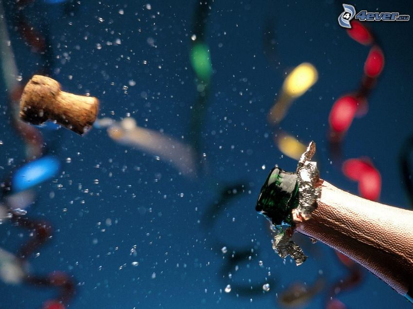 champagne, kork, kalas