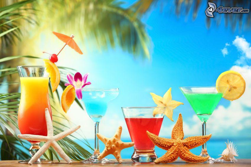 cocktail, sjöstjärnor