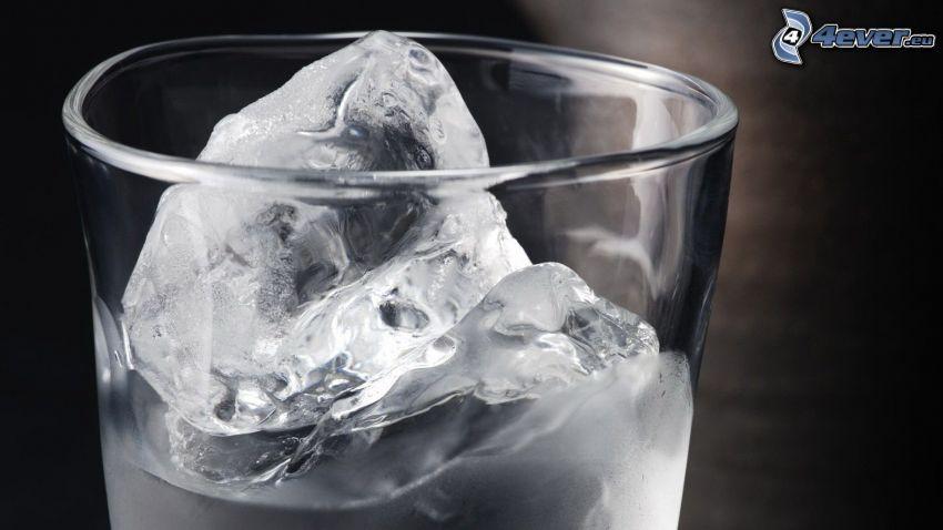 glas, vatten, isbitar, svart och vitt