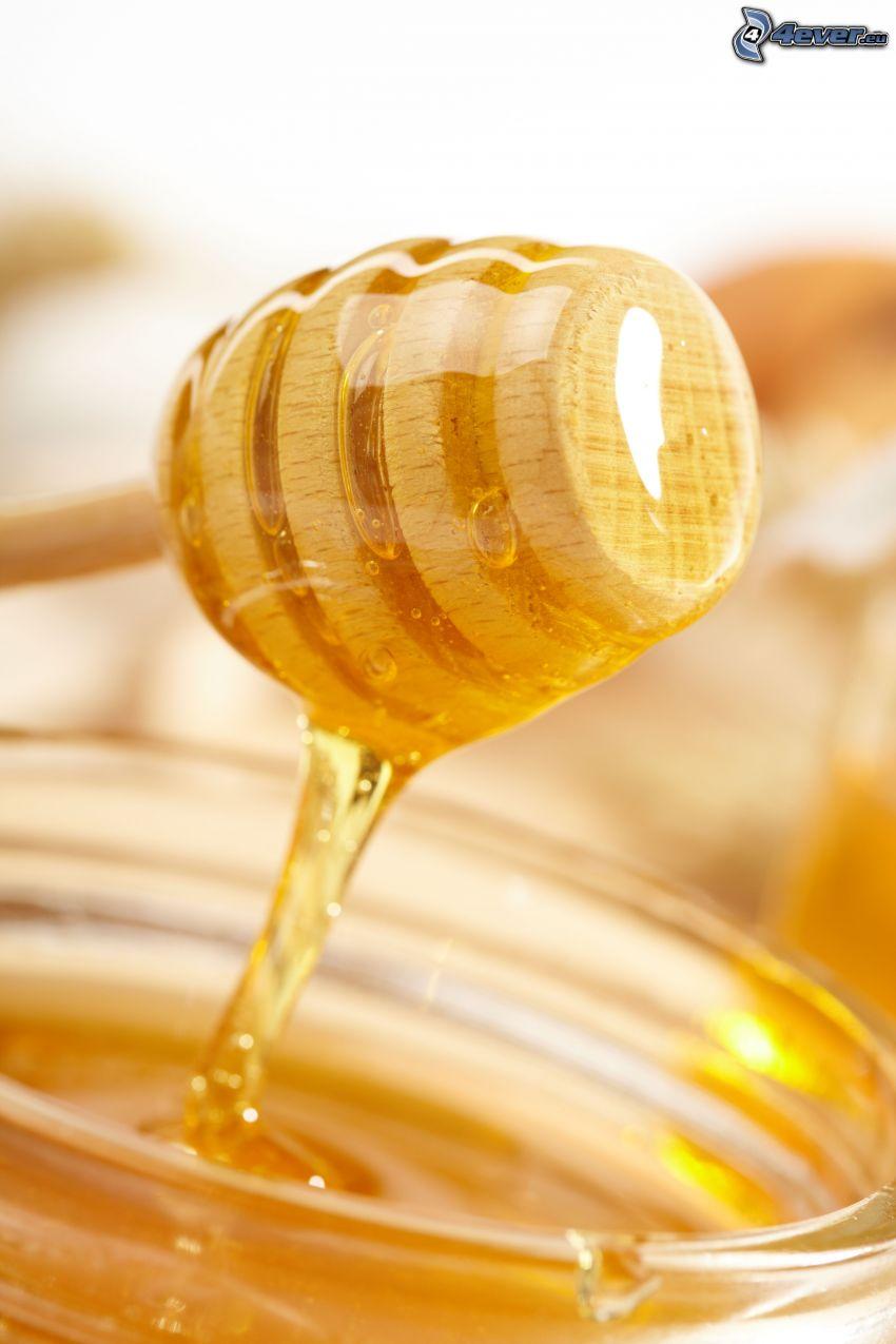honungssked i trä, honung