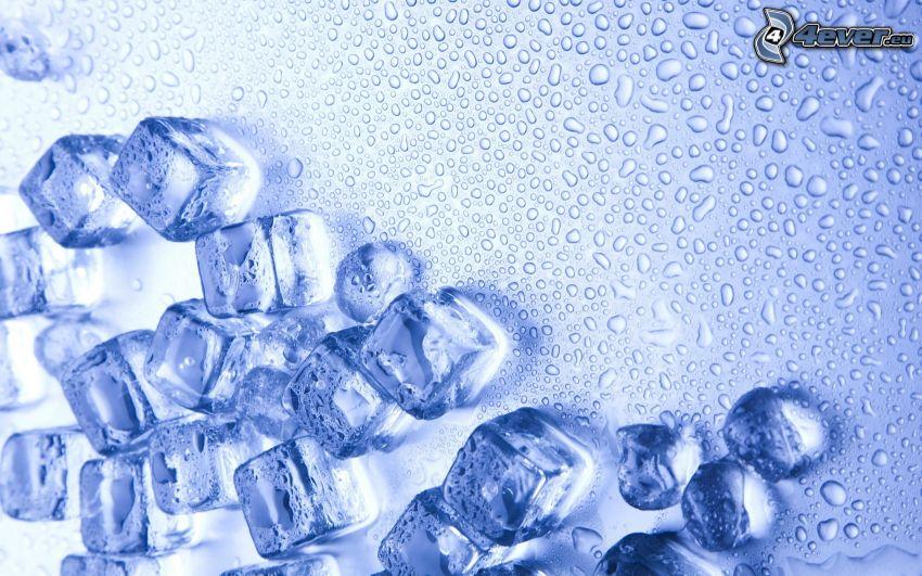 isbitar, vattendroppar