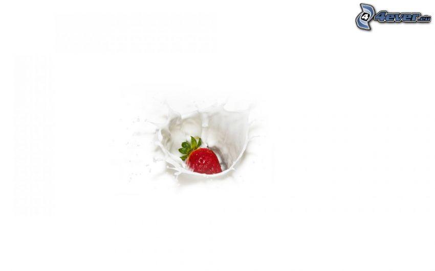 jordgubbe, mjölk, plask