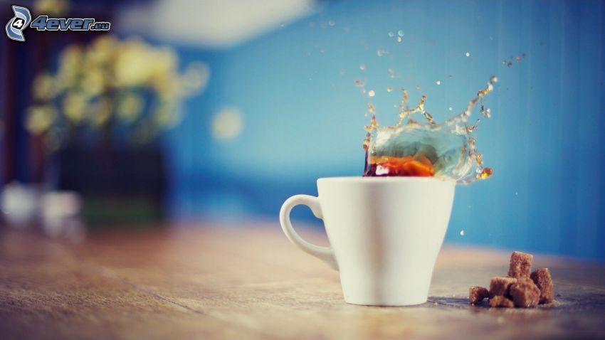 kaffe, plask