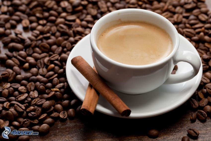kaffekopp, kaffebönor, kanel