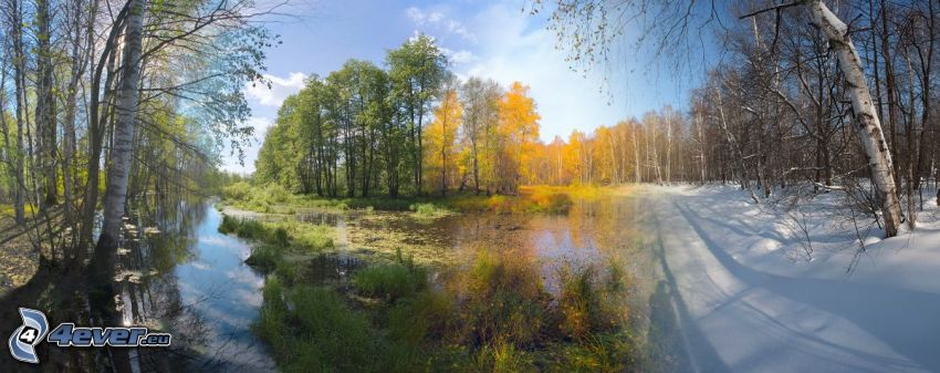 årssäsonger, vår, sommar, höst, vinter, bäck, gula träd, snö