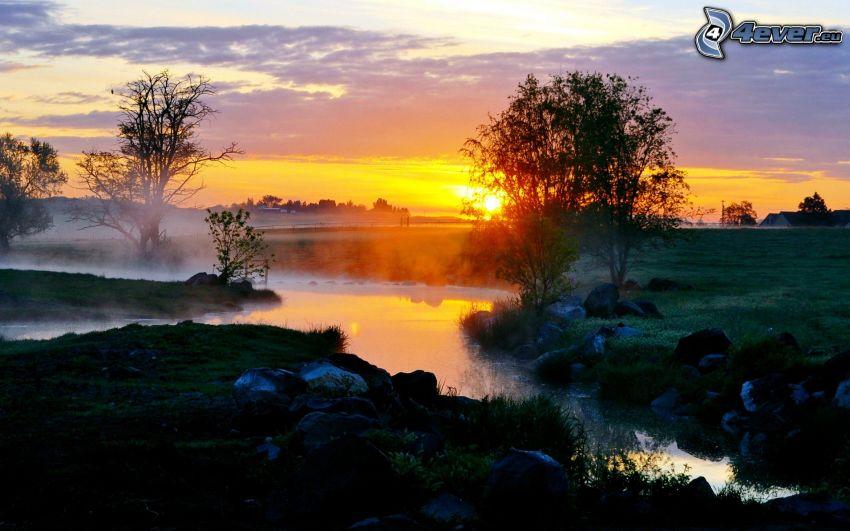 bäck, orange solnedgång, ånga