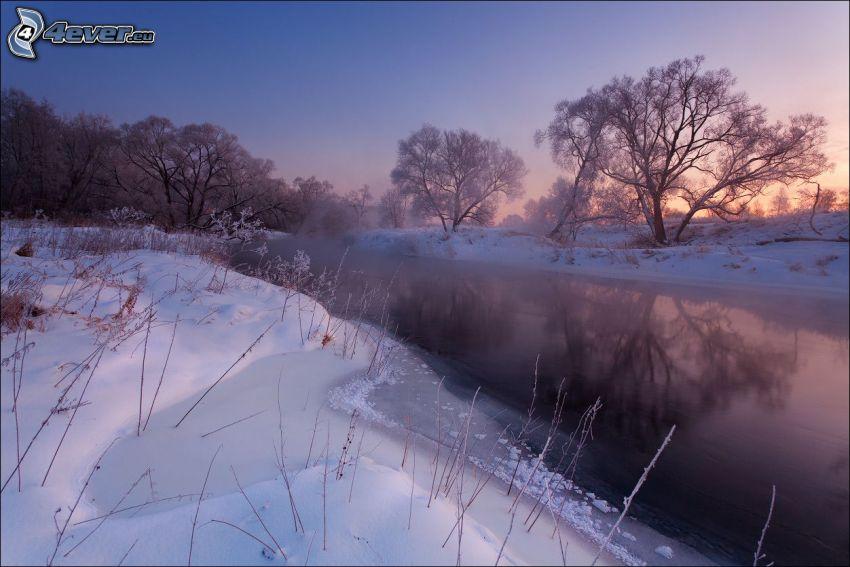 bäck, snö, efter solnedgången