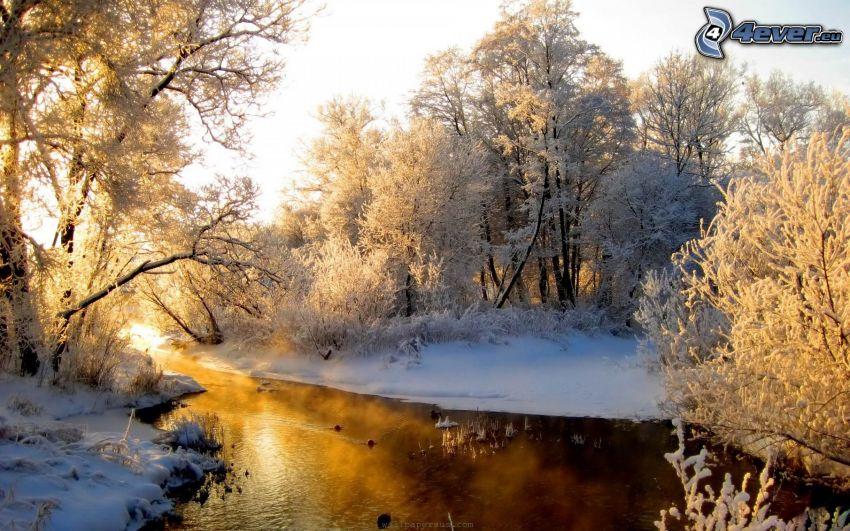 bäck, snöigt landskap