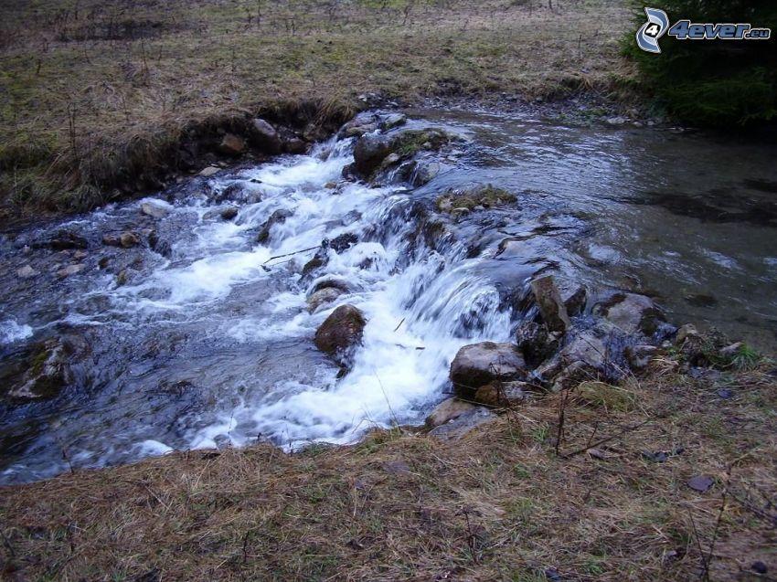 bäck, vattenfall