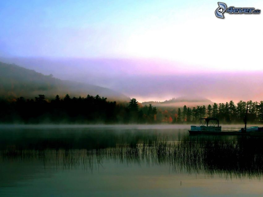 båt på sjön, dimma över skog