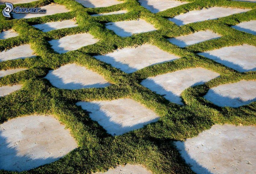 beläggning, gräs