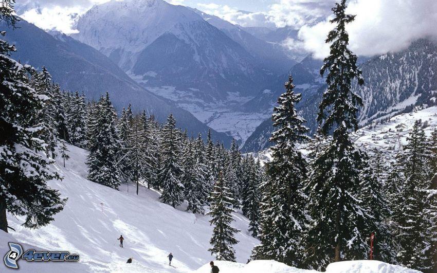 Alperna, snöigt landskap