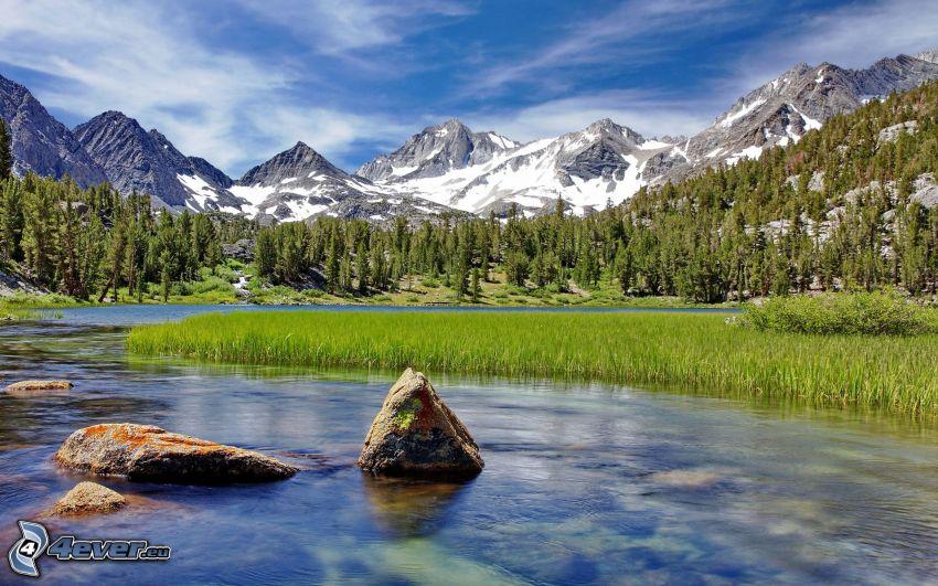 berg, flod, skog