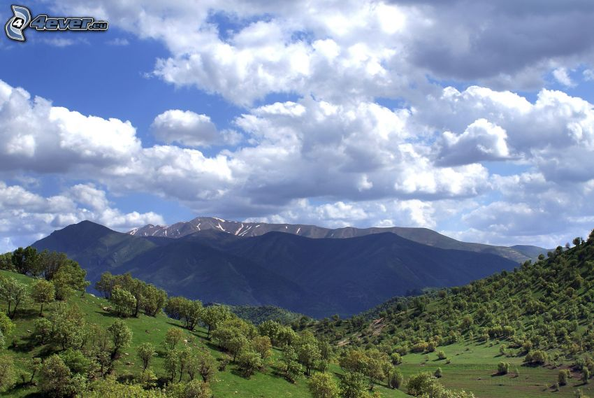 berg, kullar, träd, moln
