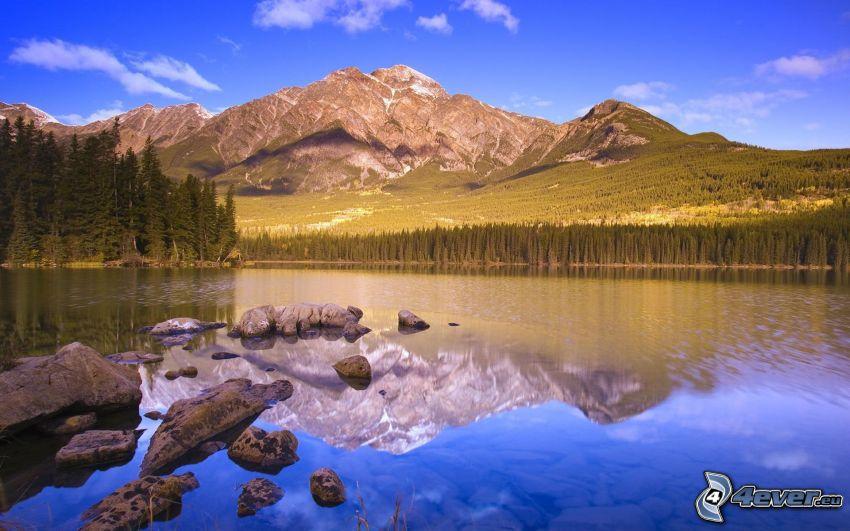 berg, sjö i skogen, spegling