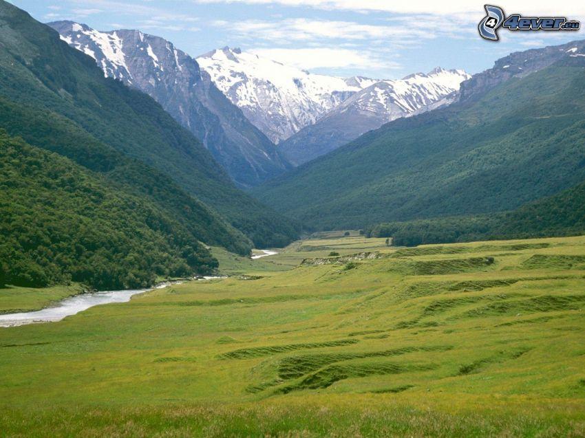 grön äng, höga berg, snöklädda berg, dal