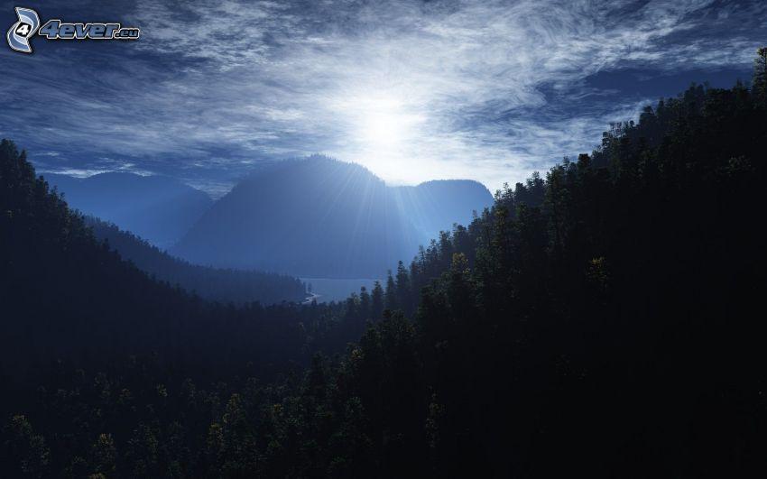 höga berg, sol, träd