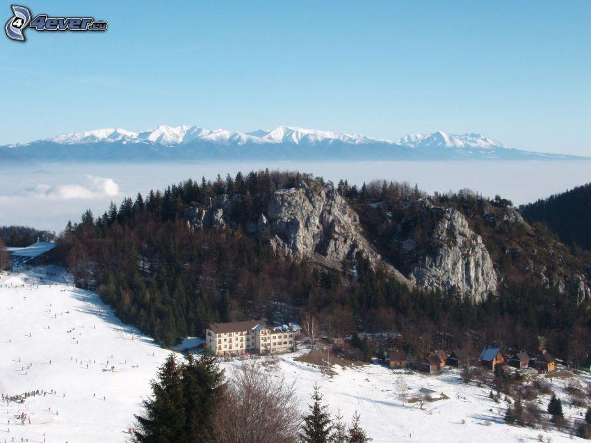 Höga Tatras, vinter, berg, kulle, snö, hotel, dal, dimma, skidlift