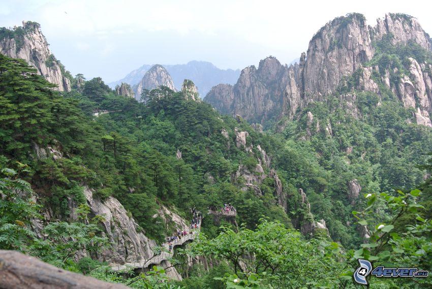 Huangshan, klippiga berg, grönska