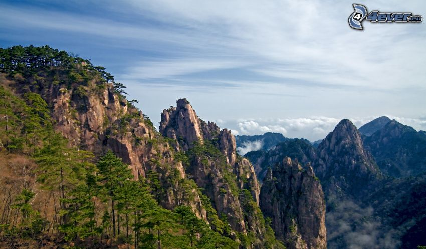 Huangshan, klippiga berg, träd