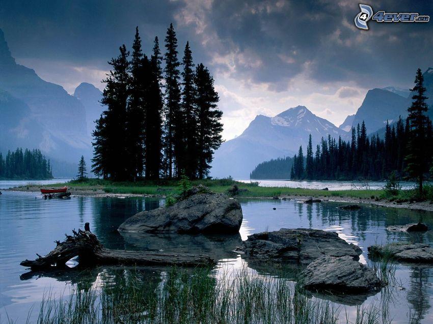 Jasper nationalpark, Alberta, Kanada, barrträd, ö, flod, berg, klippor