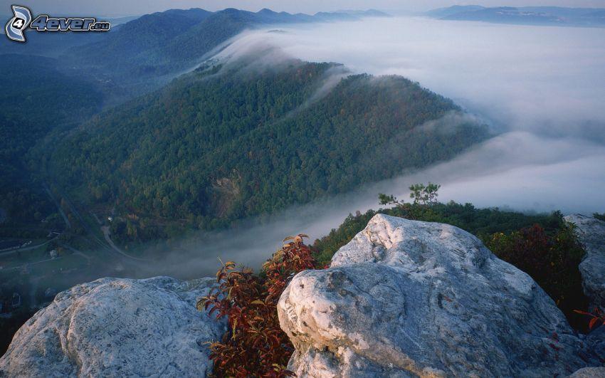 klippa, utsikt över dal, berg, dimma