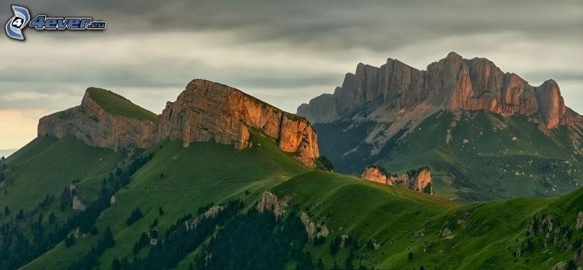 klippiga berg, grönska
