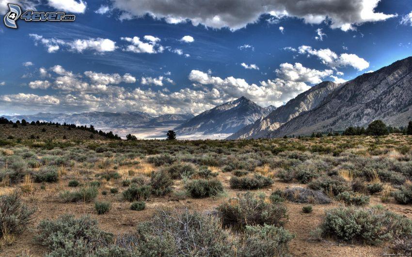 klippiga berg, moln, äng, HDR