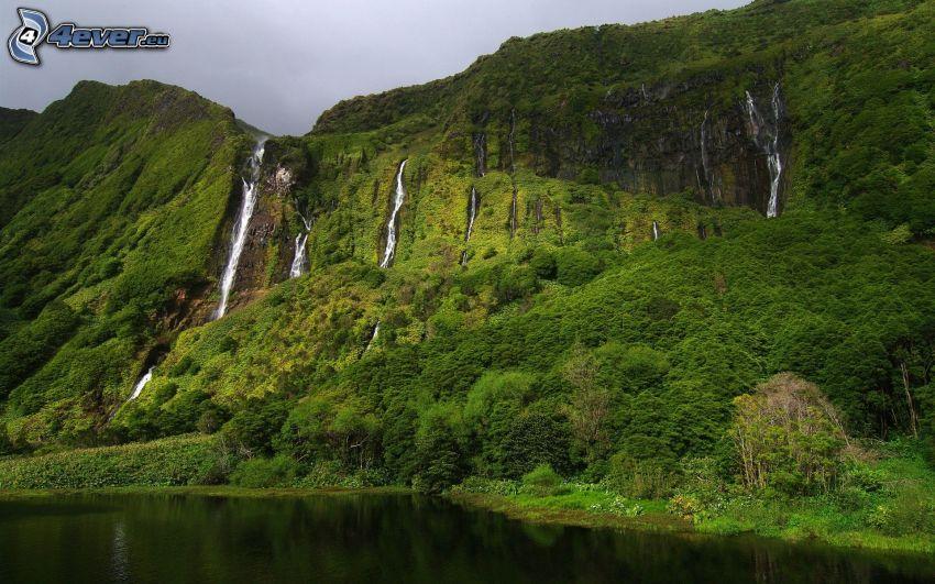 klippigt berg, träd, sjö