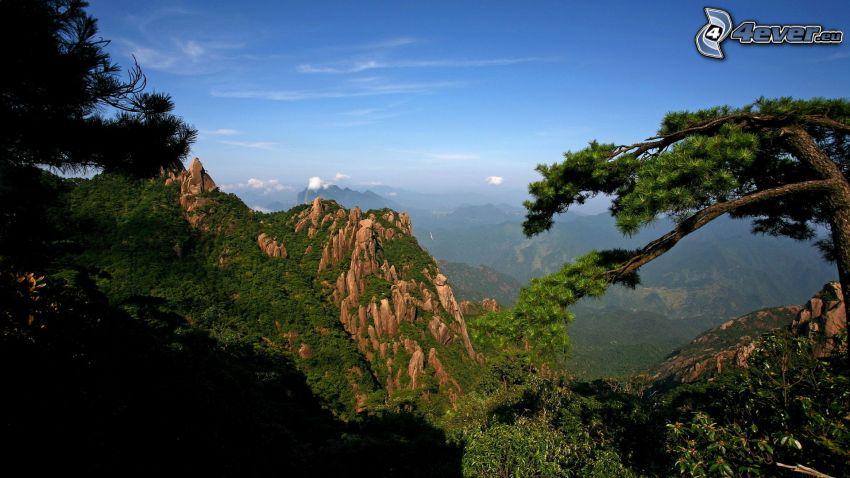 klippigt berg, träd, utsikt över landskap