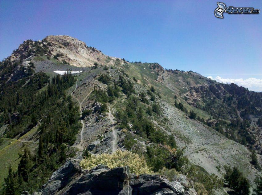 klippigt berg, vandringsled, skog
