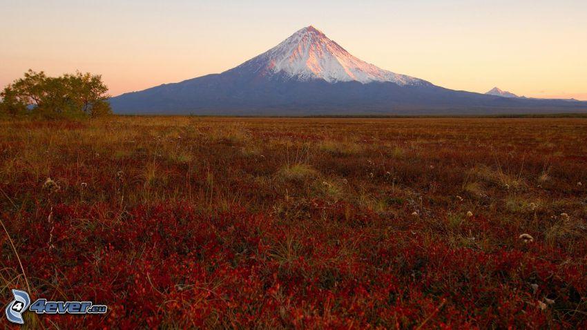 Kronotsky vulkanen, Ryssland, äng