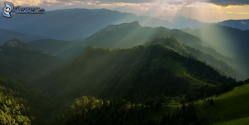 kullar, träd, solstrålar bakom moln